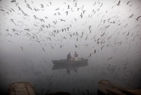 Misty Gange