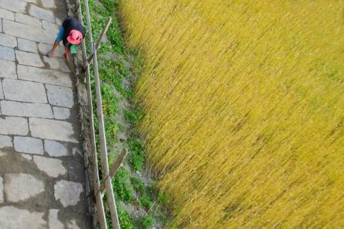 La finestra al primo piano di un lodge di Manang, durante il giro dell'Annapurna, è un ottimo punto di vista privilegiato. Tutto sta nel cercarlo, immaginarne le potenzialità e aspettare