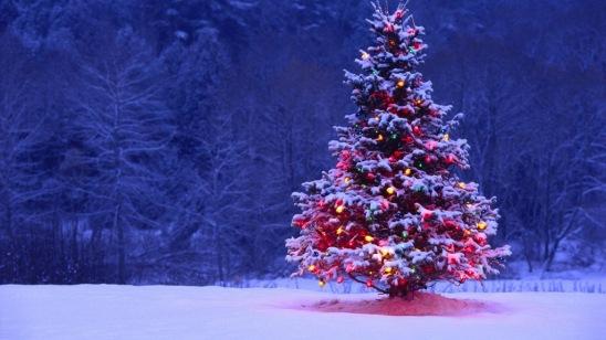 """Non è necessario che le vostre foto siano così per """"dire"""" Natale"""